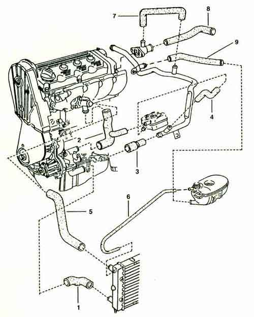2002 jetta cooling system diagram  2002  free engine image